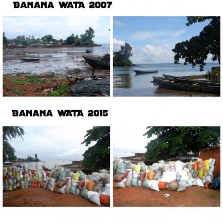 Banana Wata 2007-2015