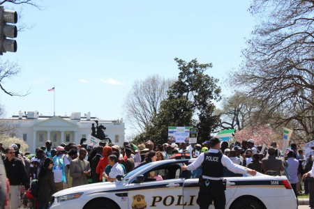 Concerned Citizens protest-Sierra Leone-Lafayette Park_April 201514