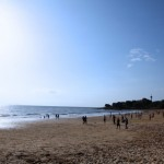 Sea Sundays13